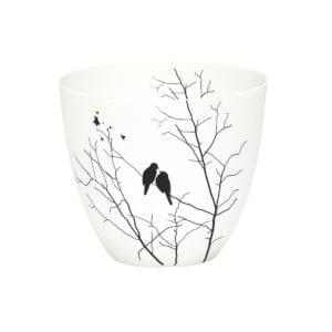 Photophore - Oiseaux