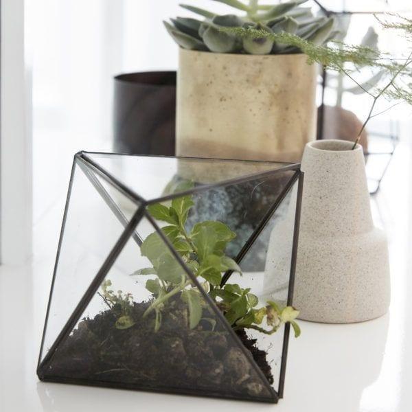 Terrarium en verre - Laiton - Hübsch - Songes - Hub_AW17_291