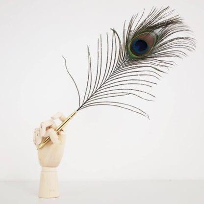 Peacock stylo Hay