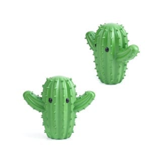 Compagnons de séchage - Cactus