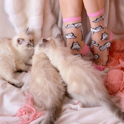 Chaussettes - Chats