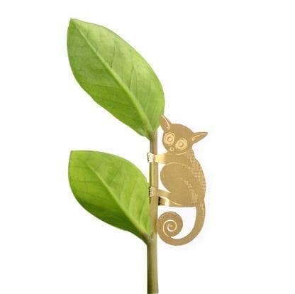 Déco pour plante - Lémurien