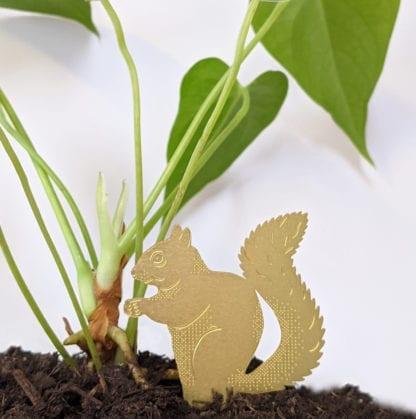 Déco pour plante - Écureuil
