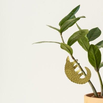 Déco pour plante - Pangolin