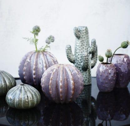 Vase cactus L