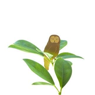 Déco pour plante - Hibou