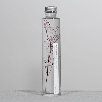 Plante en fiole M - Spécimen 13