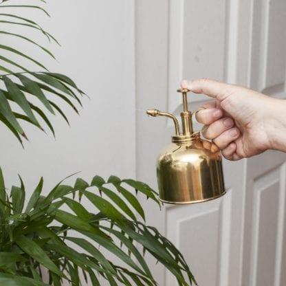 Brumisateur pour plantes - Doré