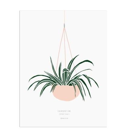 Affiche A3 – Plante suspendue