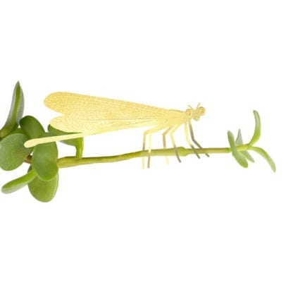 Déco pour plante - Libellule