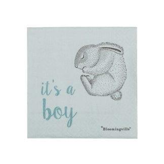 Serviettes - It's a boy