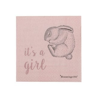 Serviettes - It's a girl