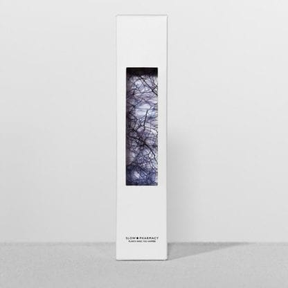 Plante en fiole M - Spécimen 24
