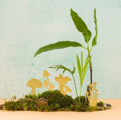 Déco pour plante - Champignons